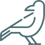 Vogel Icon Symbol Wildtierhilfe Ravensburg